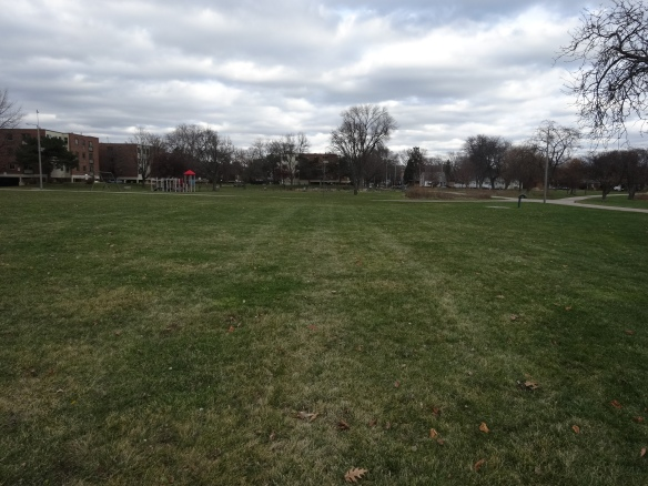 View from the proposed site of the new playground with the existing playground and garden in the background.